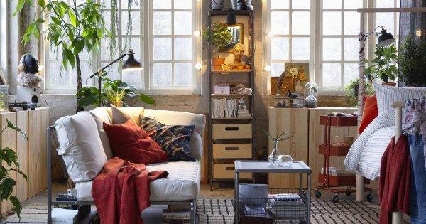 Quelles sont les plantes idéales pour les petits espaces?