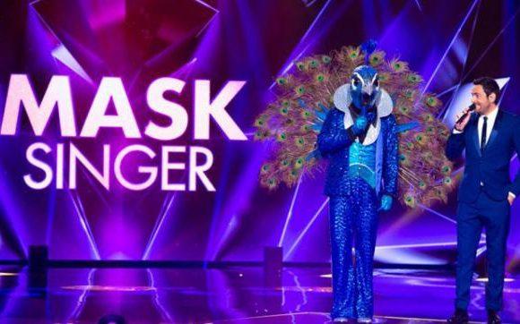 Mask Singer : l'Aigle pourra-t-il continuer la compétition après sa violente chute ?