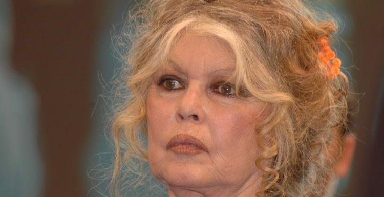 Brigitte Bardot : cette nouvelle polémique qui enfle autour de l'argent de sa fondation