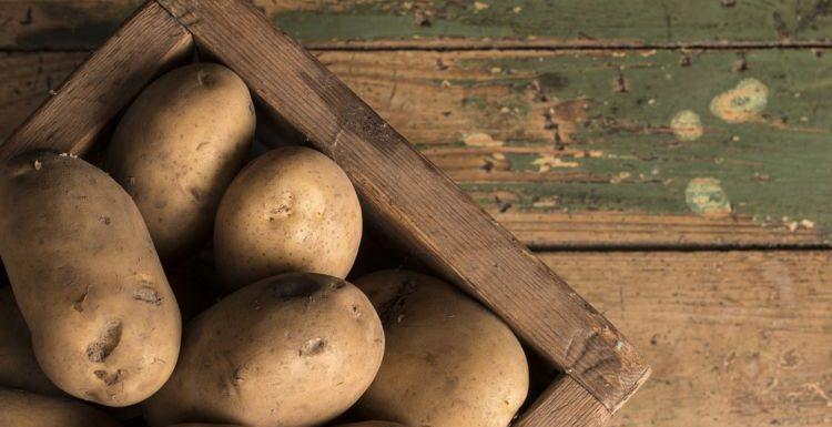 Comment stocker les pommes de terre pour les conserver plus longtemps ? | Clbritmondiale.com
