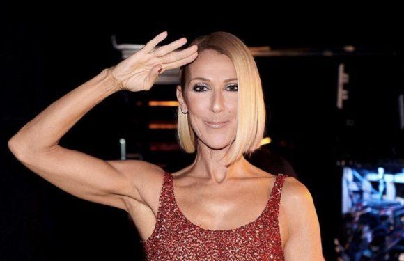 Céline Dion surprend ses fans avec une nouvelle coupe !
