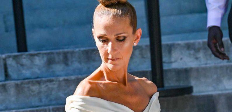 """Céline Dion """"le coeur brisé"""" : pourquoi la tragédie au Liban l'affecte personnellement"""