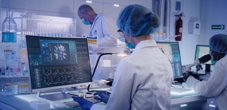 L'OMS prévoit une épidémie de coronavirus très longue