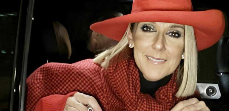 Céline Dion : pourquoi elle se fait si discrète