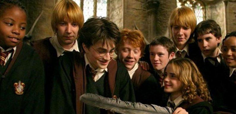 Harry Potter : Ces grosses erreurs repérées dans la saga que personne n'a jamais remarquées