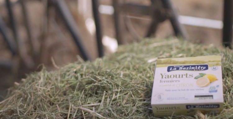 Rencontre avec un producteur de yaourts fermiers