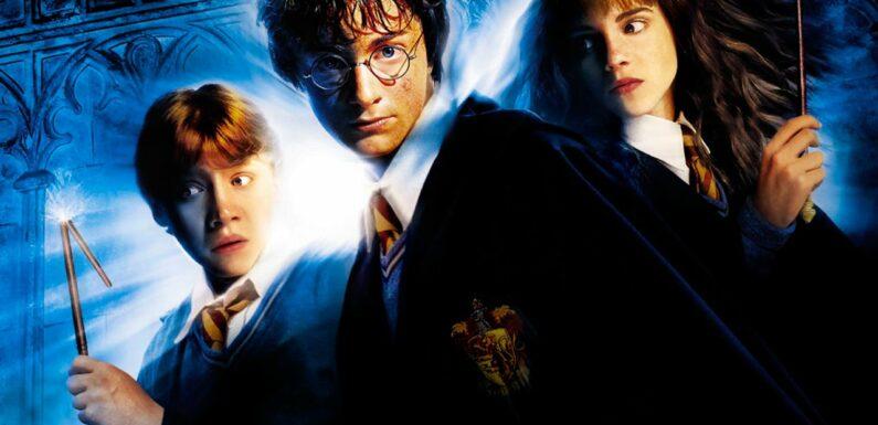 Harry Potter et la chambre des secrets sur TMC : ce n'est pas la voix de Daniel Radcliffe dans la totalité du film !