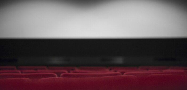 """Sortie des films sur les plateformes : """"Ce sont autant de spectateurs qui ne se rendront pas en salle"""", avertit un spécialiste"""