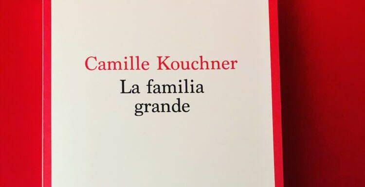 """7 bonnes raisons de lire """"La familia grande"""" de Camille Kouchner"""
