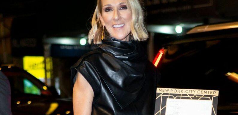 Céline Dion, son message d'espoir pour 2021
