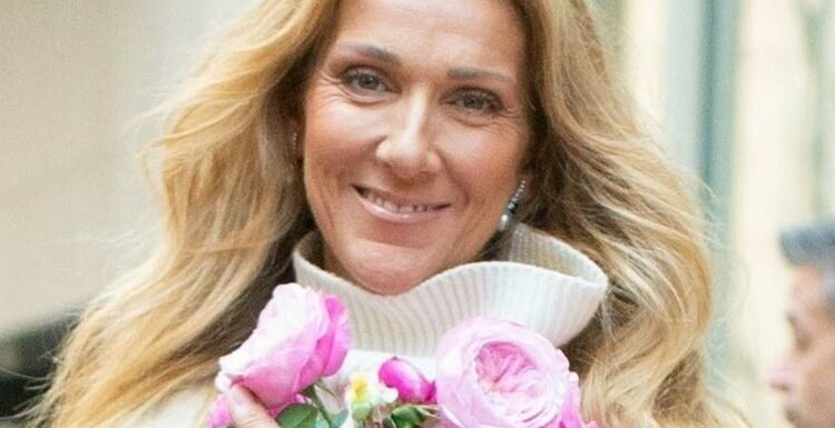 Céline Dion canon : elle pose en mode ski comme on ne l'a jamais vue