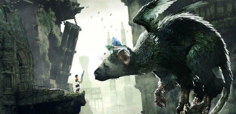 genDESIGN, le studio de Fumito Ueda (The Last Guardian), tease son prochain jeu en image