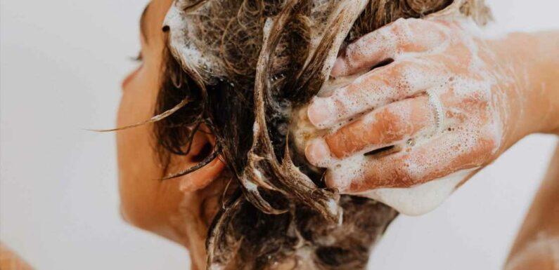 Les 3 meilleurs shampoings pour des cheveux nourris, doux et en bonne santé
