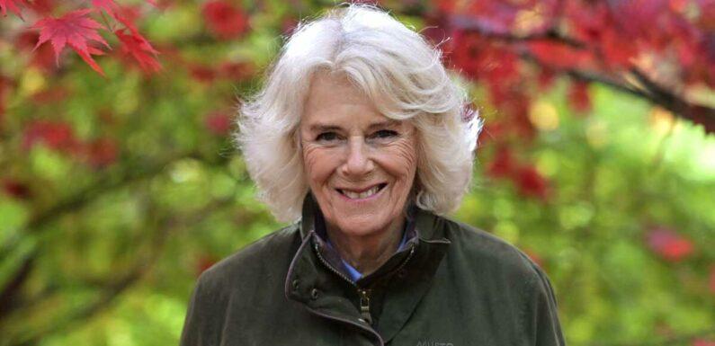 Prince Charles : découvrez la magnifique demeure secrète de Camilla