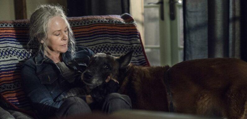 The Walking Dead saison 10 : Spin-off avec Daryl, avenir incertain de Carol… Melissa McBride tease la suite pour son personnage (EXCLU)