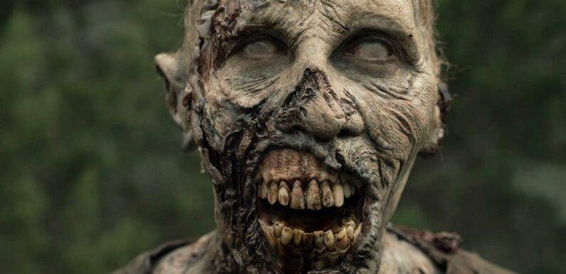 The Walking Dead : On sait pourquoi les zombies ont subi un changement drastique au fil des saisons