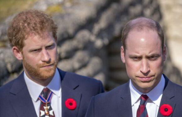 Harry et William ne se verront pas avant les funérailles du prince Philip