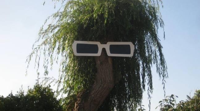 Les lunettes géantes de Polnareff installées sur un arbre ont été volées