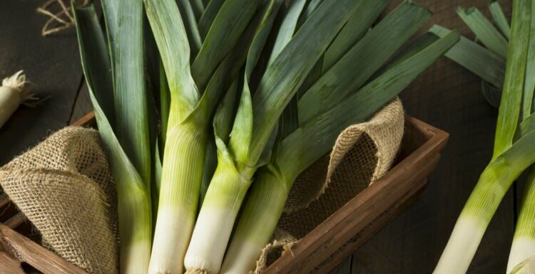 Que faire avec le vert du poireau : nos meilleures recettes anti-gaspi