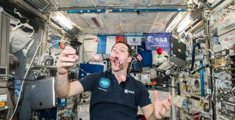 Thomas Pesquet : sa plus grande difficulté rencontrée dans l'espace