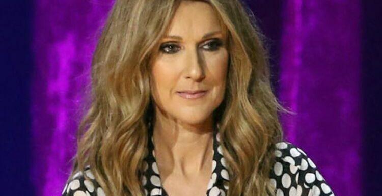 Céline Dion envoûtante : elle s'affiche dans une robe décolletée incroyable