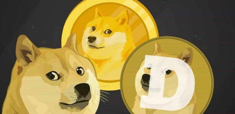 Dogecoin : Elon Musk affirme qu'il n'est pas responsable de son développement