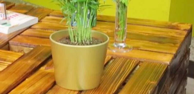 Faire une table basse à partir de cagettes à pommes, c'est possible !