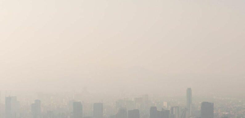 Air pollué, eaux grises, comment nos déchets sont traités ?