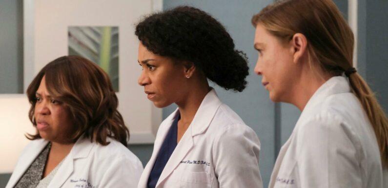 Grey's Anatomy saison 18 : Intrigue, date de diffusion, casting… Tout ce qu'il faut savoir sur les nouveaux épisodes de la série
