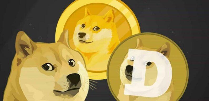 Le vrai Dogecoin vendu pour plusieurs millions d'Ethereum