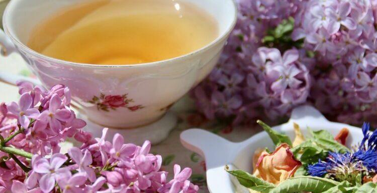 2 recettes d'infusions de plantes qui font une belle peau