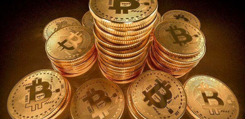 Bitcoin : La police se fait voler 45 000 dollars par les criminels qu'elle ciblait