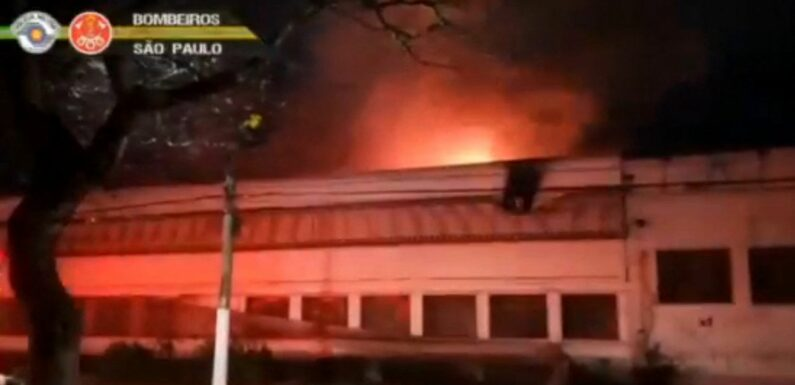 Brésil : un incendie détruit 2000 copies de films de la Cinémathèque de Sao Paulo