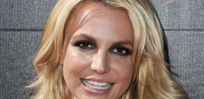Britney Spears : l'avocat en charge de sa tutelle présente sa démission