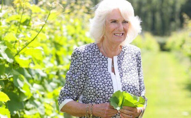 Camilla Parker-Bowles: découvrez le surnom que lui donnent les enfants de Kate et William