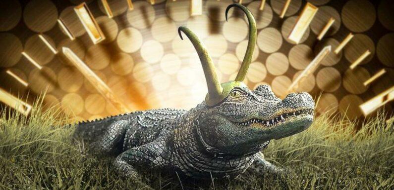 Loki : Voici à quoi ressemble l'alligator Loki sans CGI et c'est ridicule