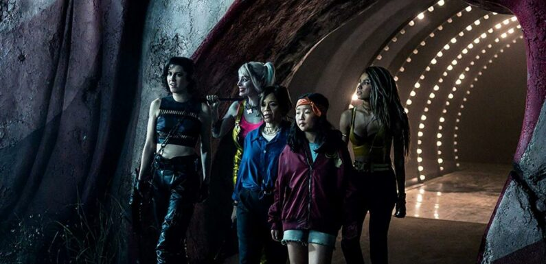 DCEU : Harley Quinn, Huntress, Batgirl… Ces personnages pourraient apparaître dans le spin-off sur Black Canary