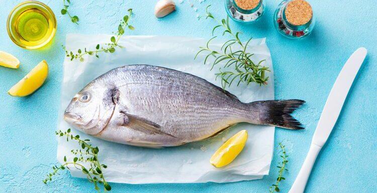 Disparition des espèces, biodiversité en danger…comment choisir son poisson ?