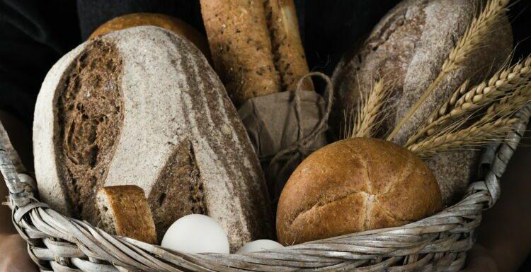 Aux noix, sans gluten… : 5 pains qui nous font du bien