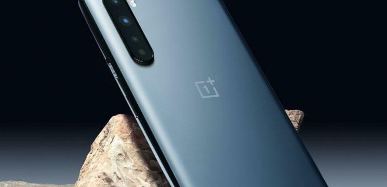 Bon Plan OnePlus Nord N100 : 22% de réduction pour le smartphone au triple capteur photo