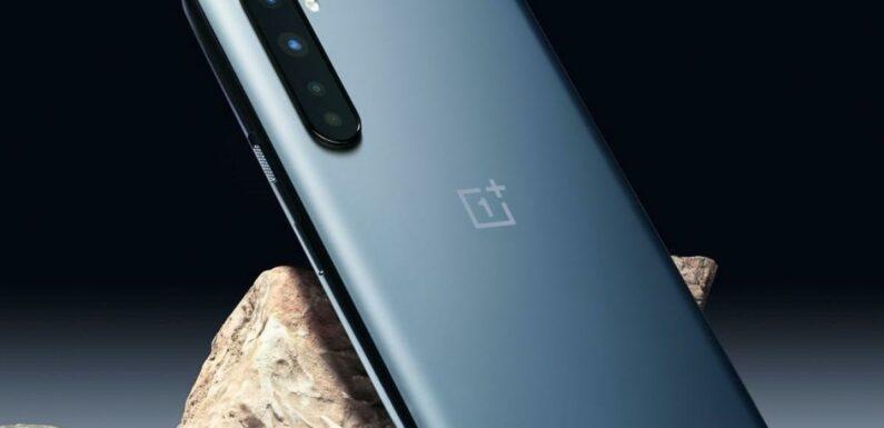 Bon Plan OnePlus Nord N100 : Remise de 22% pour le smartphone à la solide fiche technique