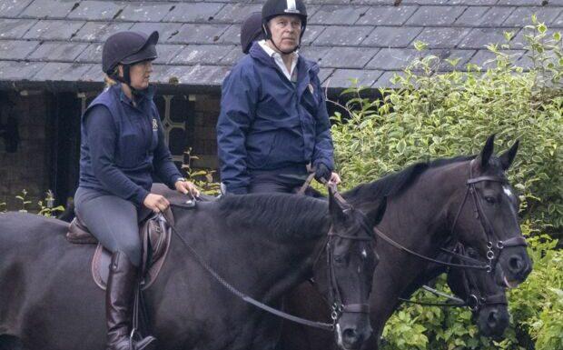 Le prince Andrew oublie ses ennuis judiciaires en s'offrant une partie de chasse…