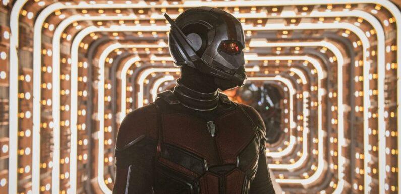 Shang-Chi : Pourquoi Ant-Man et la Guêpe ne sont pas dans le film ?