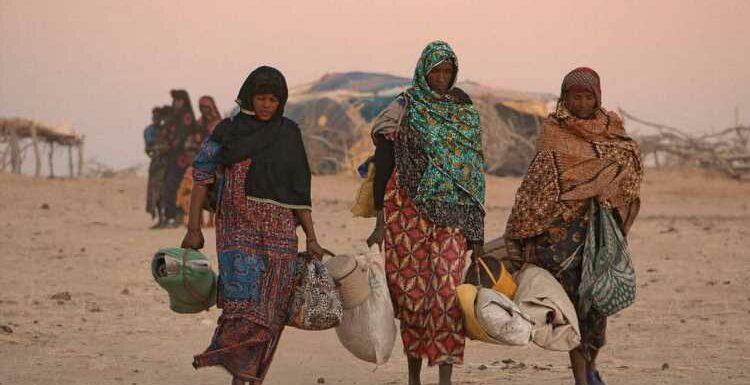 À Saint-Jean-de-Luz, Aïssa Maïga présente son documentaire sur le réchauffement climatique au Sahel