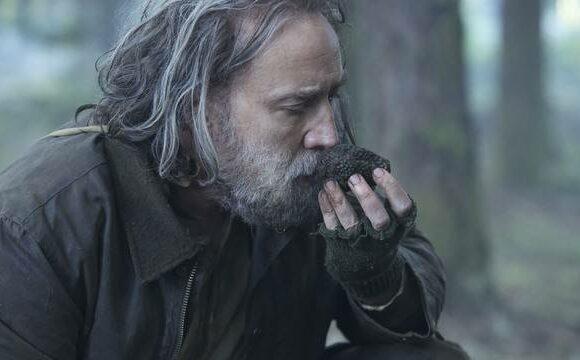 «Pig» révèle le caractère de cochon de Nicolas Cage