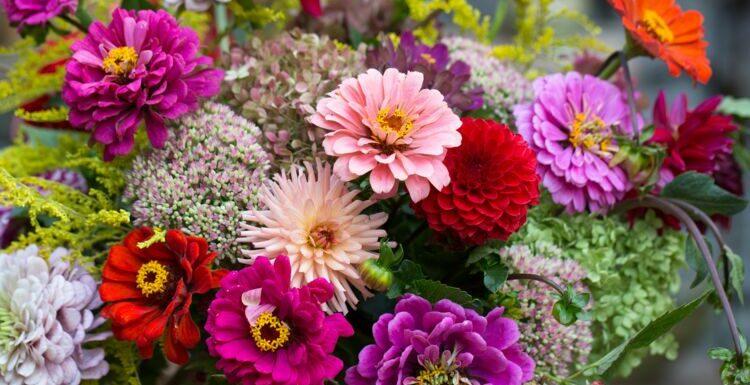 Quelles fleurs acheter à quelle saison ?